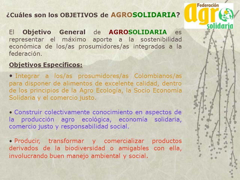 El Objetivo General de AGROSOLIDARIA es representar el máximo aporte a la sostenibilidad económica de los/as prosumidores/as integrados a la federació