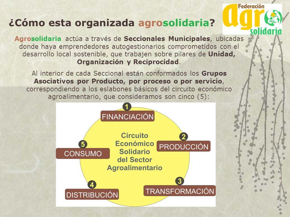 ¿Cómo esta organizada agrosolidaria? Agrosolidaria actúa a través de Seccionales Municipales, ubicadas donde haya emprendedores autogestionarios compr