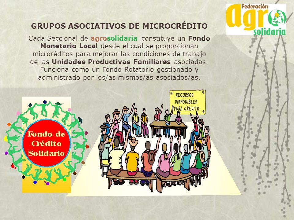 GRUPOS ASOCIATIVOS DE MICROCRÉDITO Cada Seccional de agrosolidaria constituye un Fondo Monetario Local desde el cual se proporcionan microréditos para