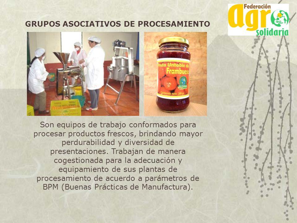 GRUPOS ASOCIATIVOS DE PROCESAMIENTO Son equipos de trabajo conformados para procesar productos frescos, brindando mayor perdurabilidad y diversidad de