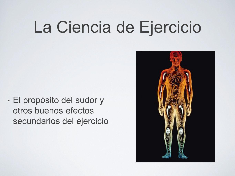 La Ciencia de Ejercicio El propósito del sudor y otros buenos efectos secundarios del ejercicio