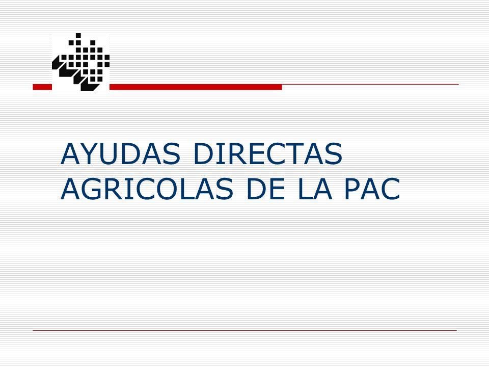 Superficies declaradas de las diferentes ayudas y cultivos en Alava y en la comarca Cantábrica: campaña 2009 ALAVA AYALA - maiz forrajero 800 93(12%) - alfalfa 301 41 (14%) - cultivos forrajeros 695 14 (2%) - otros cultivos agríc.