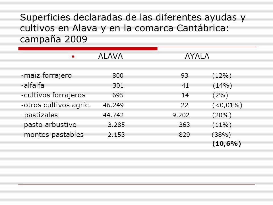 Superficies declaradas de las diferentes ayudas y cultivos en Alava y en la comarca Cantábrica: campaña 2009 ALAVA AYALA - maiz forrajero 800 93(12%)