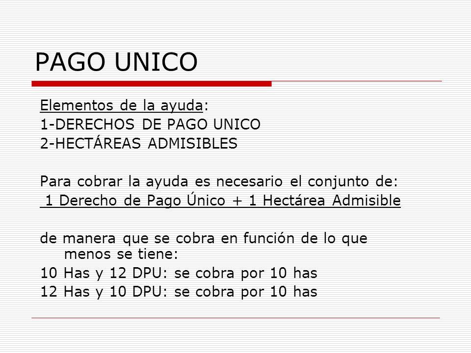 PAGO UNICO Elementos de la ayuda: 1-DERECHOS DE PAGO UNICO 2-HECTÁREAS ADMISIBLES Para cobrar la ayuda es necesario el conjunto de: 1 Derecho de Pago