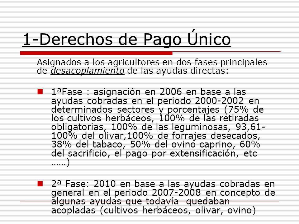 1-Derechos de Pago Único Asignados a los agricultores en dos fases principales de desacoplamiento de las ayudas directas: 1ªFase : asignación en 2006