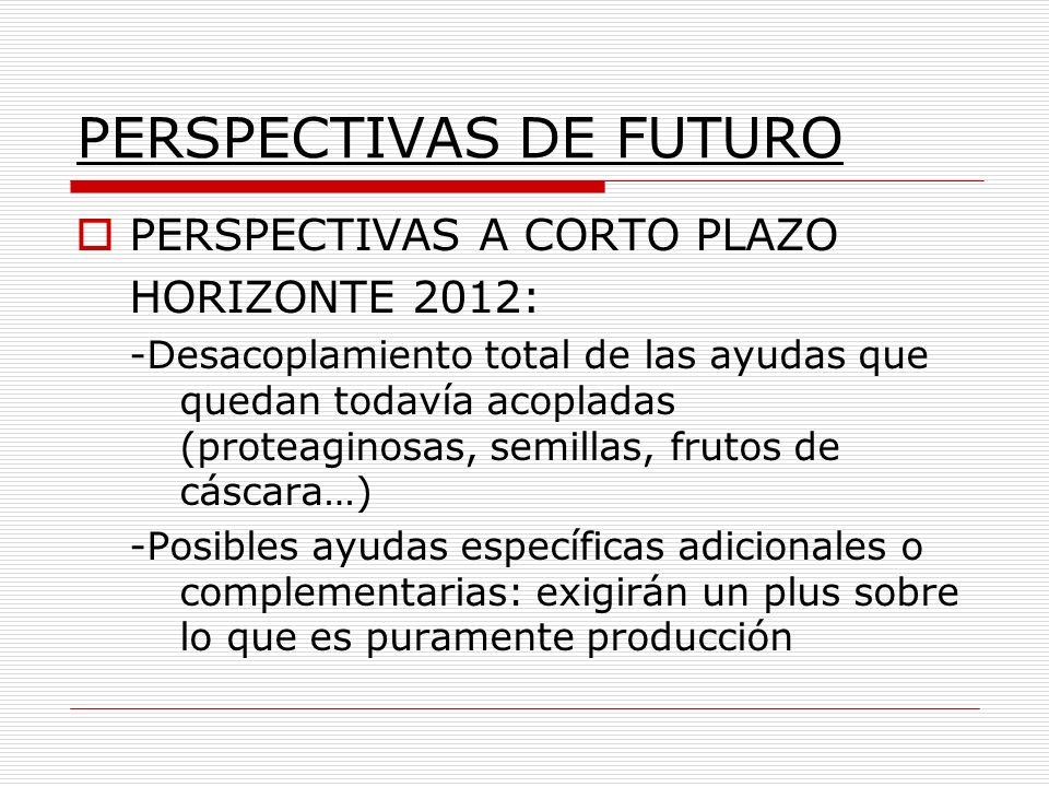 PERSPECTIVAS DE FUTURO PERSPECTIVAS A CORTO PLAZO HORIZONTE 2012: -Desacoplamiento total de las ayudas que quedan todavía acopladas (proteaginosas, se