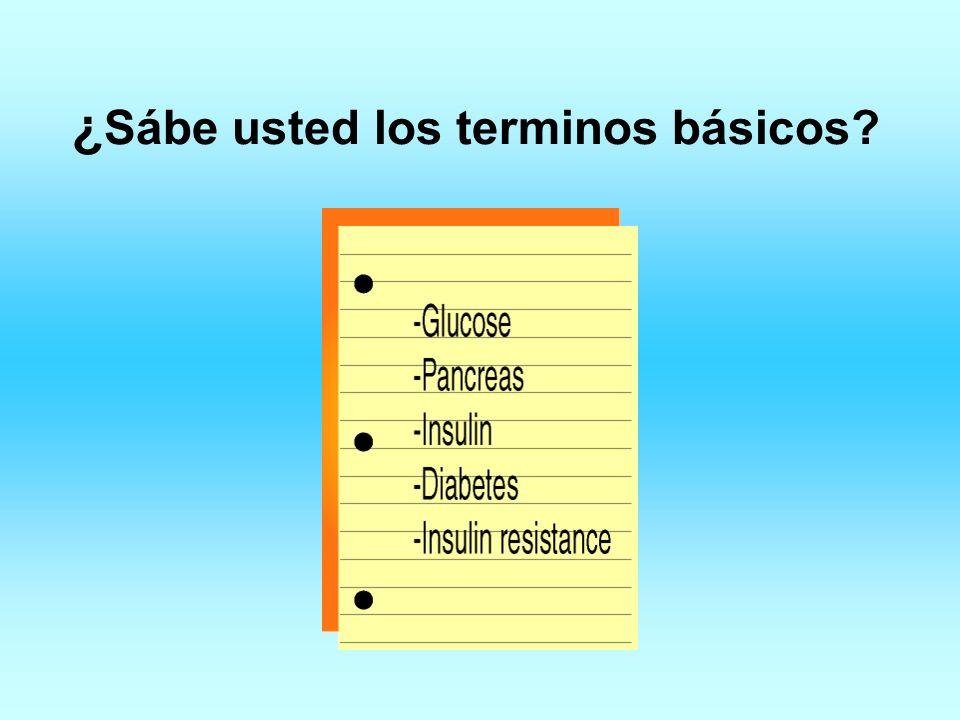 ¿ Sábe usted los terminos básicos?