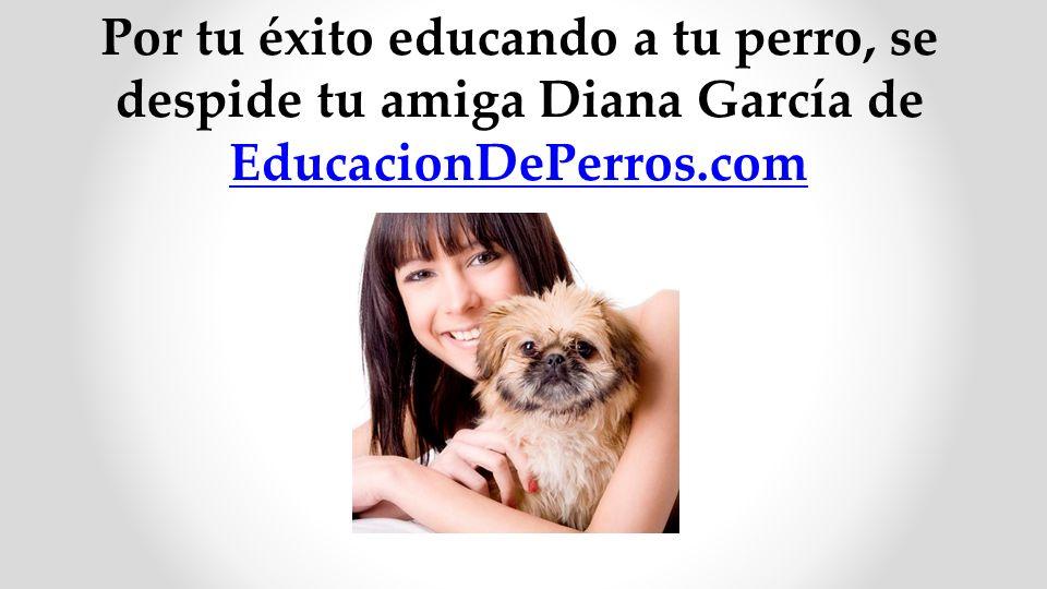Por tu éxito educando a tu perro, se despide tu amiga Diana García de EducacionDePerros.com