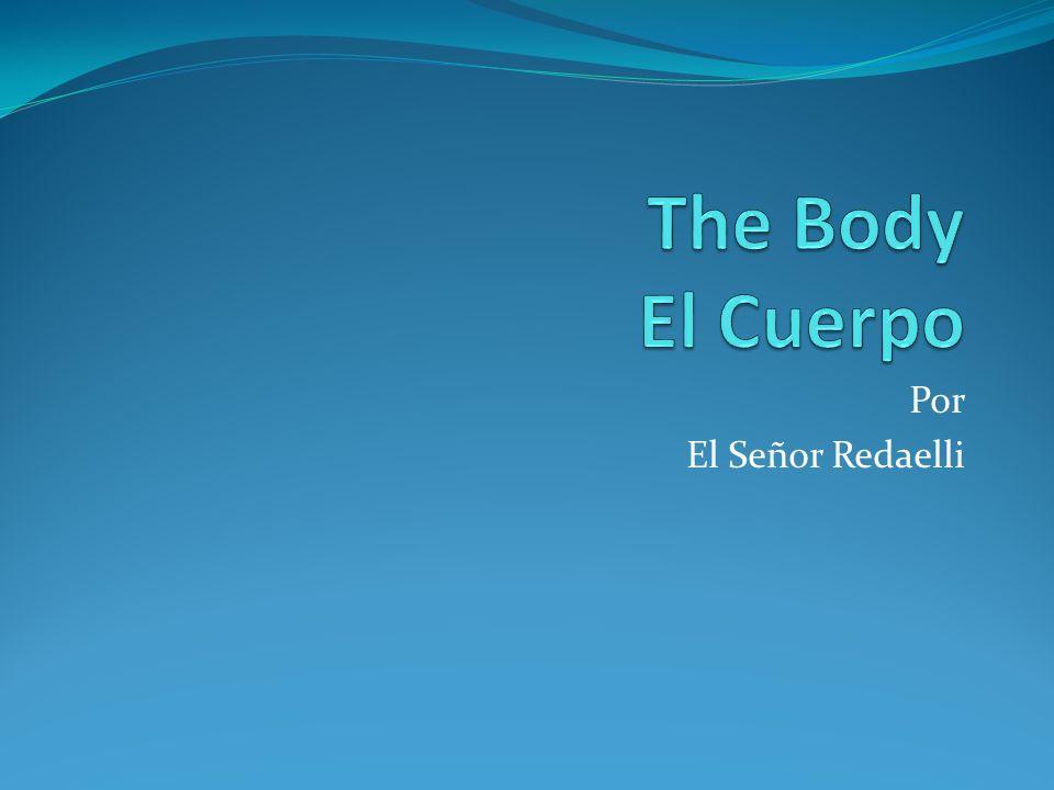 El Cuerpo La cabeza - The head Los ojos - The eyes Las orejas - The ears La nariz - The nose La boca - The mouth Los dientes - The teeth