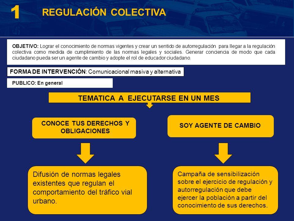1 TEMATICA A EJECUTARSE EN UN MES REGULACIÓN COLECTIVA OBJETIVO: Lograr el conocimiento de normas vigentes y crear un sentido de autorregulación para