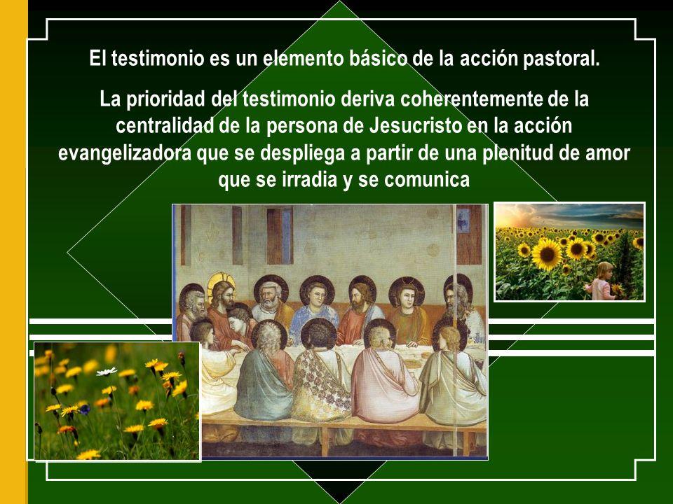 El testimonio es un elemento básico de la acción pastoral.