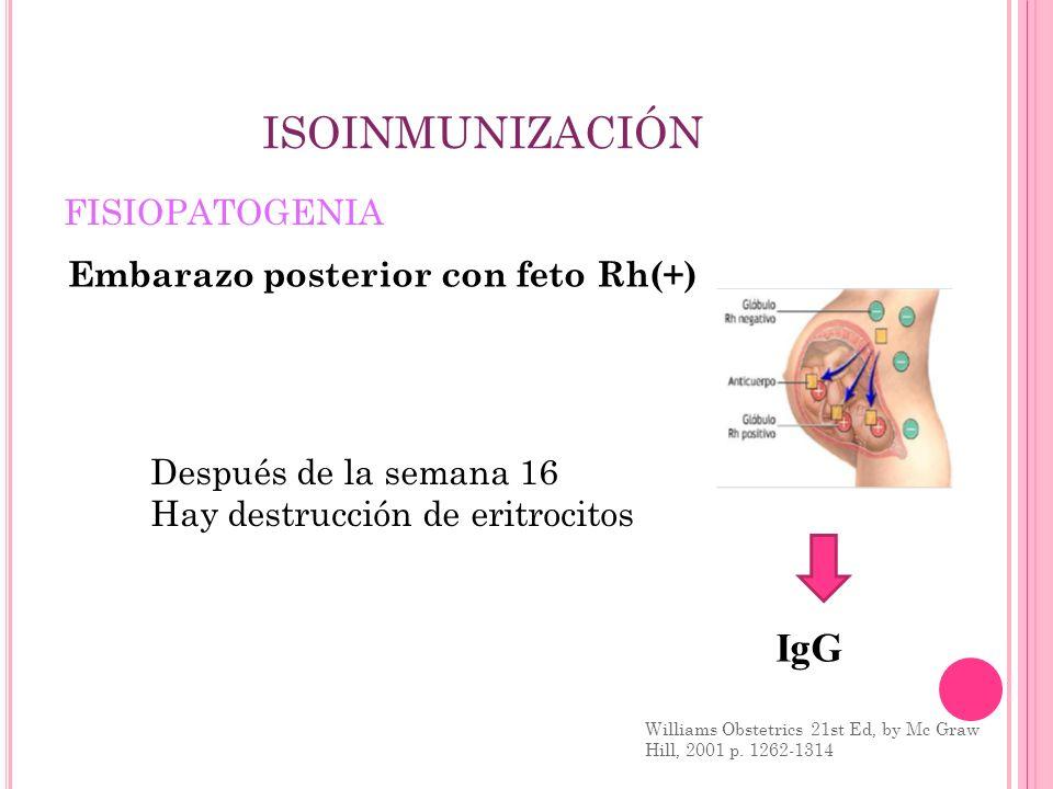 ISOINMUNIZACIÓN FISIOPATOGENIA Williams Obstetrics 21st Ed, by Mc Graw Hill, 2001 p. 1262-1314 IgG Embarazo posterior con feto Rh(+) Después de la sem