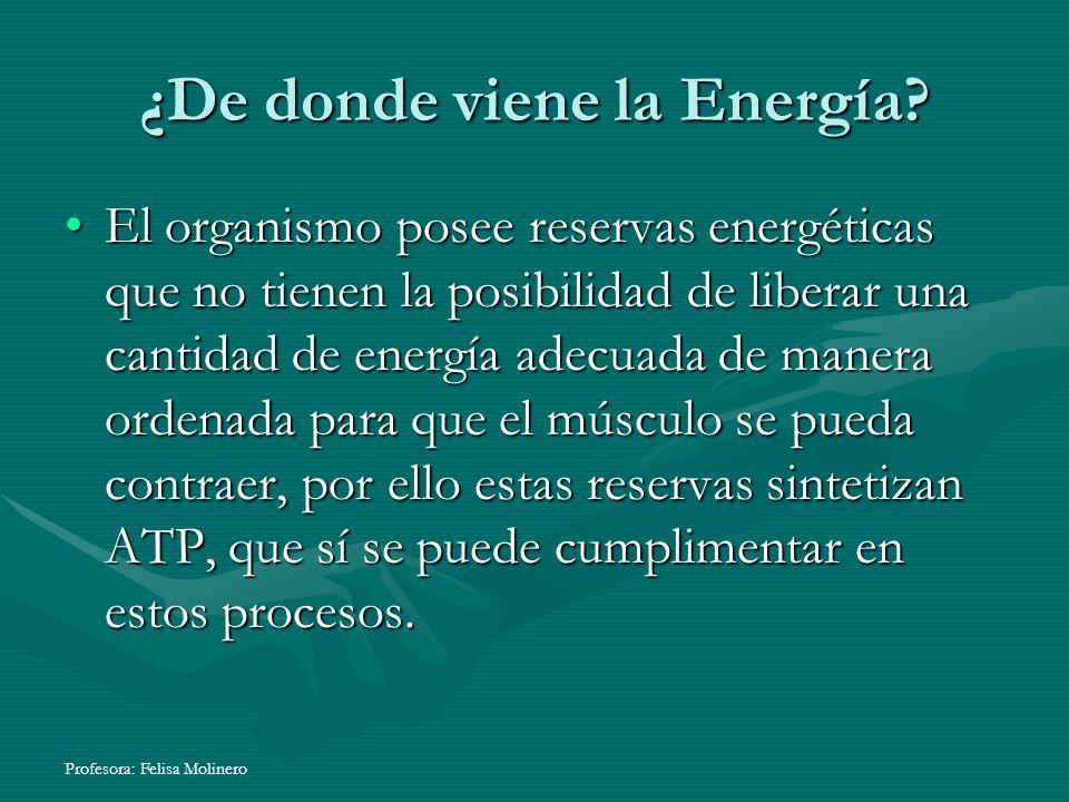 Profesora: Felisa Molinero ¿De donde viene la Energía? El organismo posee reservas energéticas que no tienen la posibilidad de liberar una cantidad de