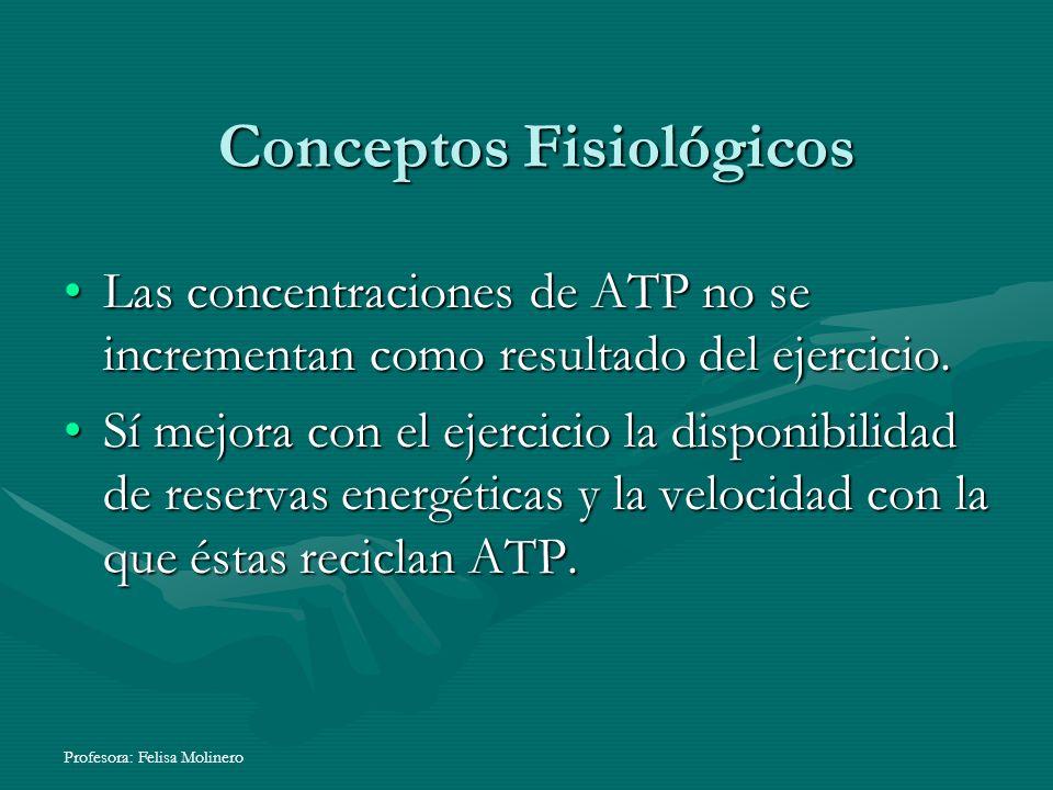 Profesora: Felisa Molinero Conceptos Fisiológicos Las concentraciones de ATP no se incrementan como resultado del ejercicio.Las concentraciones de ATP