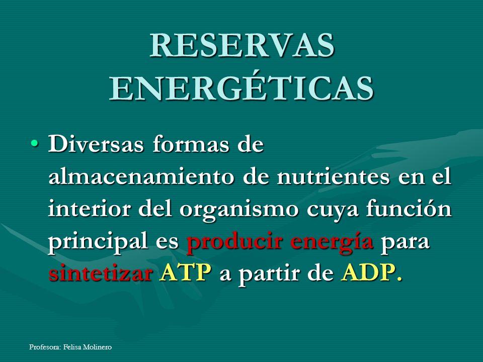 Profesora: Felisa Molinero RESERVAS ENERGÉTICAS Diversas formas de almacenamiento de nutrientes en el interior del organismo cuya función principal es
