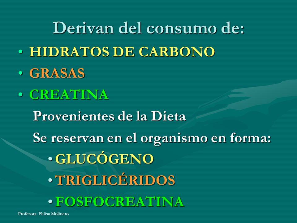 Profesora: Felisa Molinero Derivan del consumo de: HIDRATOS DE CARBONO GRASAS CREATINA Provenientes de la Dieta Se reservan en el organismo en forma: