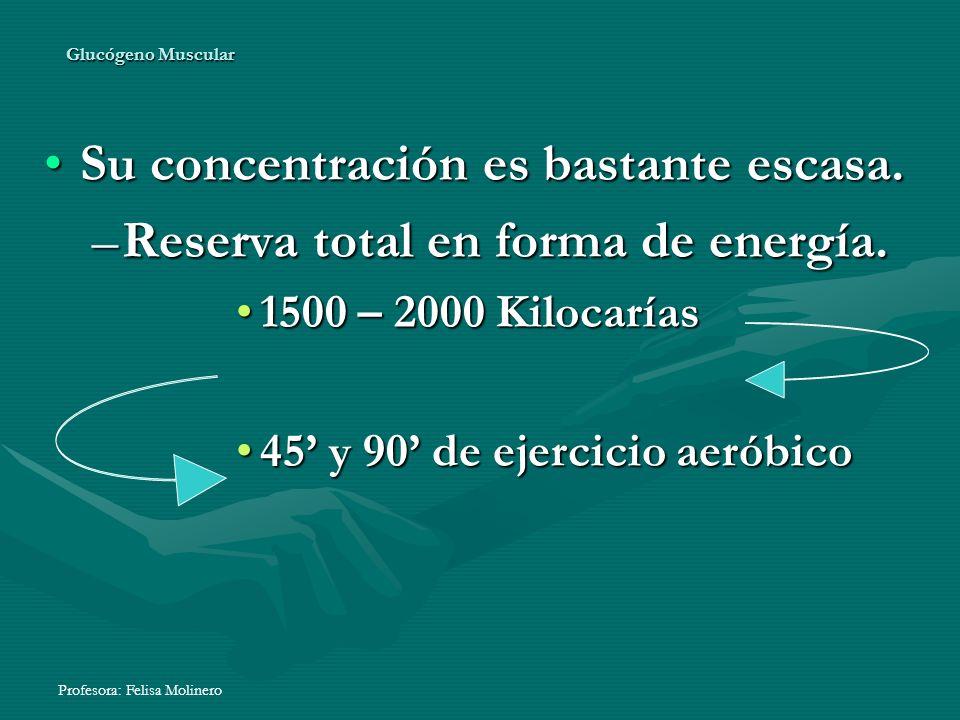 Profesora: Felisa Molinero Glucógeno Muscular Su concentración es bastante escasa. –R–R–R–Reserva total en forma de energía. 1500 – 2000 Kilocarías 45