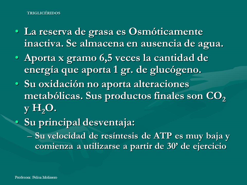 Profesora: Felisa Molinero TRIGLICÉRIDOS La reserva de grasa es Osmóticamente inactiva. Se almacena en ausencia de agua.La reserva de grasa es Osmótic