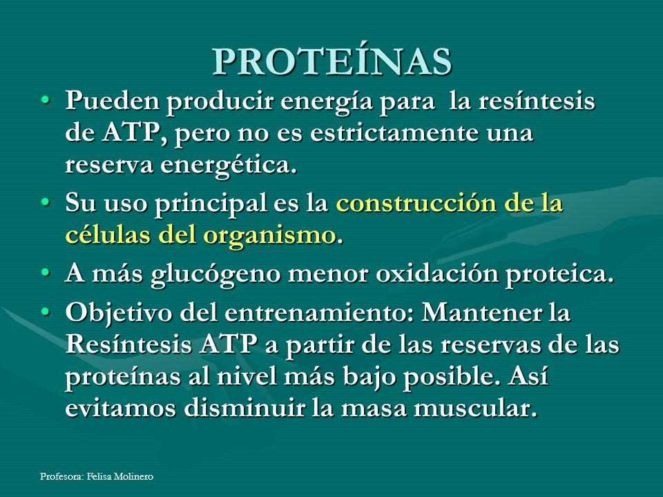 Profesora: Felisa Molinero PROTEÍNAS Pueden producir energía para la resíntesis de ATP, pero no es estrictamente una reserva energética.Pueden produci