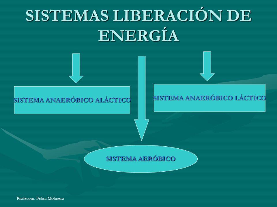 Profesora: Felisa Molinero SISTEMAS LIBERACIÓN DE ENERGÍA SISTEMA ANAERÓBICO ALÁCTICO SISTEMA ANAERÓBICO LÁCTICO SISTEMA AERÓBICO