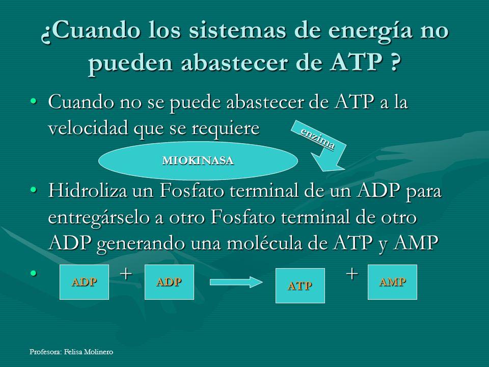 Profesora: Felisa Molinero ¿Cuando los sistemas de energía no pueden abastecer de ATP ? Cuando no se puede abastecer de ATP a la velocidad que se requ