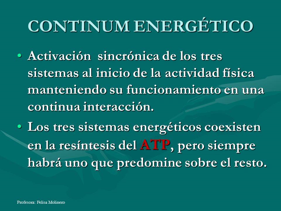 Profesora: Felisa Molinero CONTINUM ENERGÉTICO Activación sincrónica de los tres sistemas al inicio de la actividad física manteniendo su funcionamien