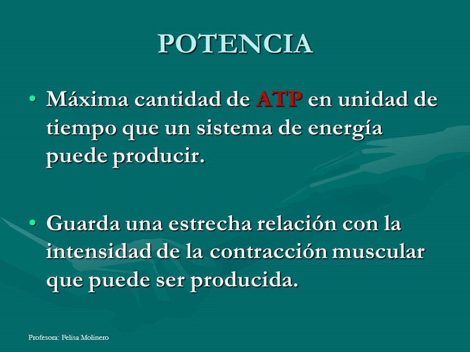 Profesora: Felisa Molinero POTENCIA Máxima cantidad de ATP en unidad de tiempo que un sistema de energía puede producir. Guarda una estrecha relación