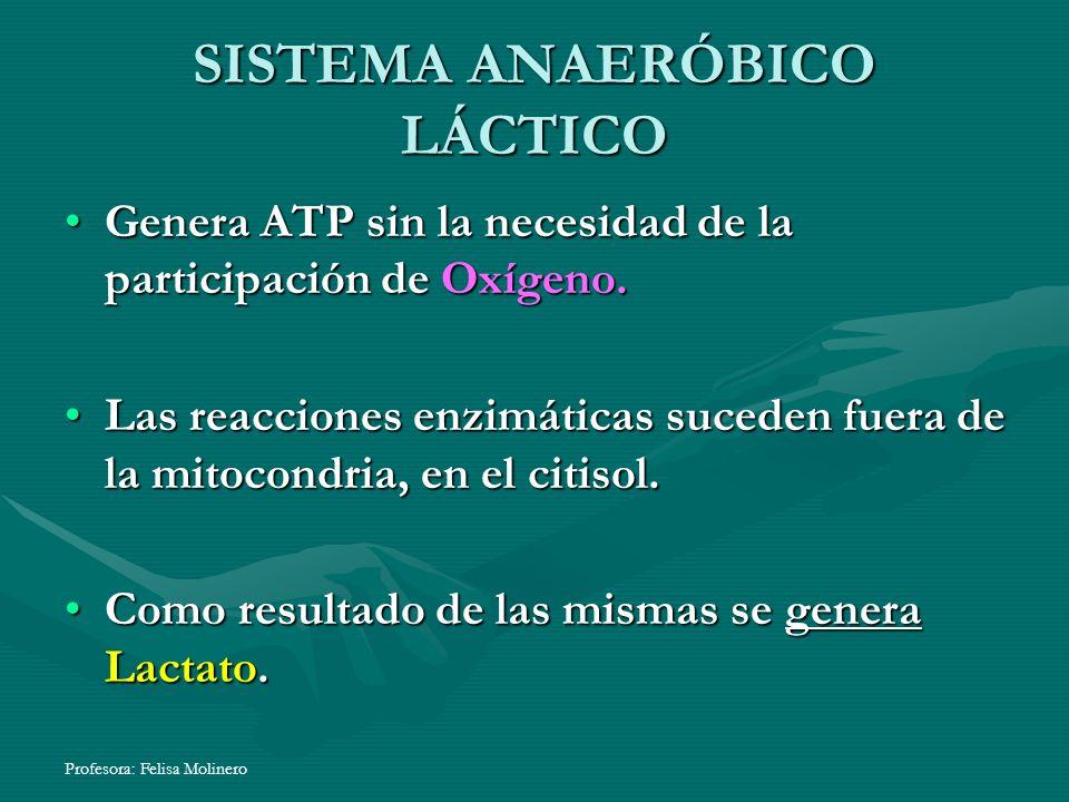 Profesora: Felisa Molinero SISTEMA ANAERÓBICO LÁCTICO Genera ATP sin la necesidad de la participación de Oxígeno.Genera ATP sin la necesidad de la par