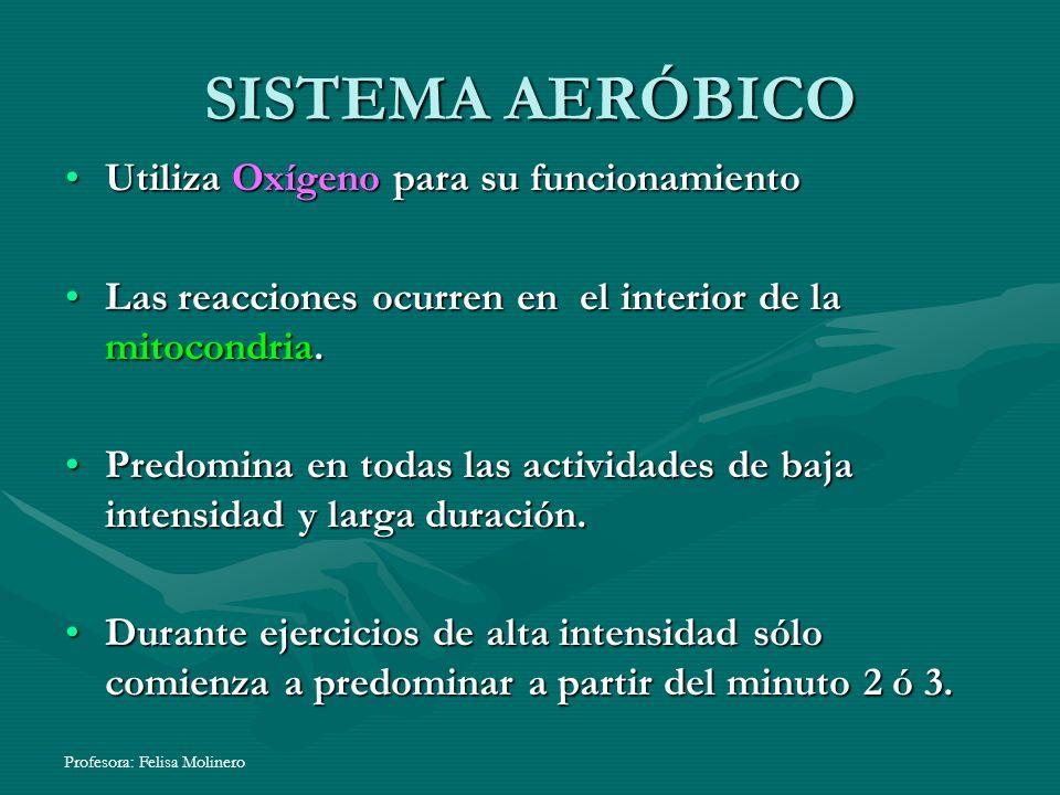 Profesora: Felisa Molinero SISTEMA AERÓBICO Utiliza Oxígeno para su funcionamientoUtiliza Oxígeno para su funcionamiento Las reacciones ocurren en el