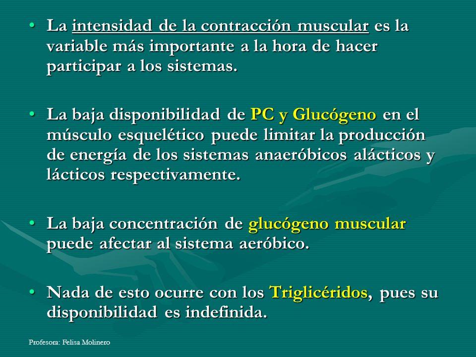 Profesora: Felisa Molinero La intensidad de la contracción muscular es la variable más importante a la hora de hacer participar a los sistemas.La inte