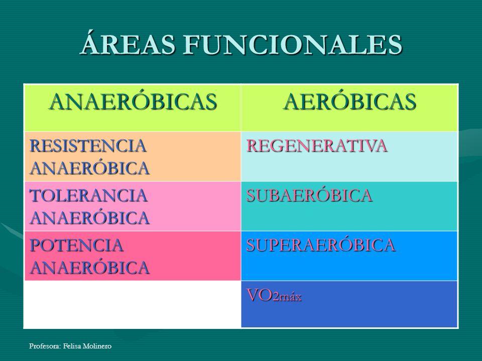 Profesora: Felisa Molinero ÁREAS FUNCIONALES ANAERÓBICASAERÓBICAS RESISTENCIA ANAERÓBICA REGENERATIVA TOLERANCIA ANAERÓBICA SUBAERÓBICA POTENCIA ANAER