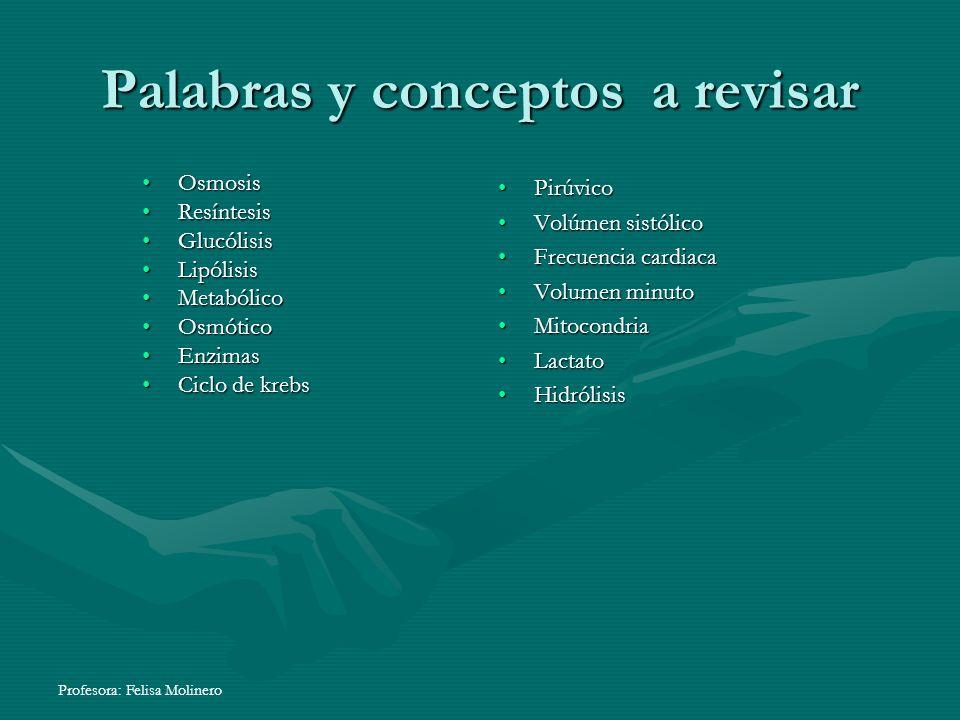 Profesora: Felisa Molinero Palabras y conceptos a revisar OsmosisOsmosis ResíntesisResíntesis GlucólisisGlucólisis LipólisisLipólisis MetabólicoMetabó
