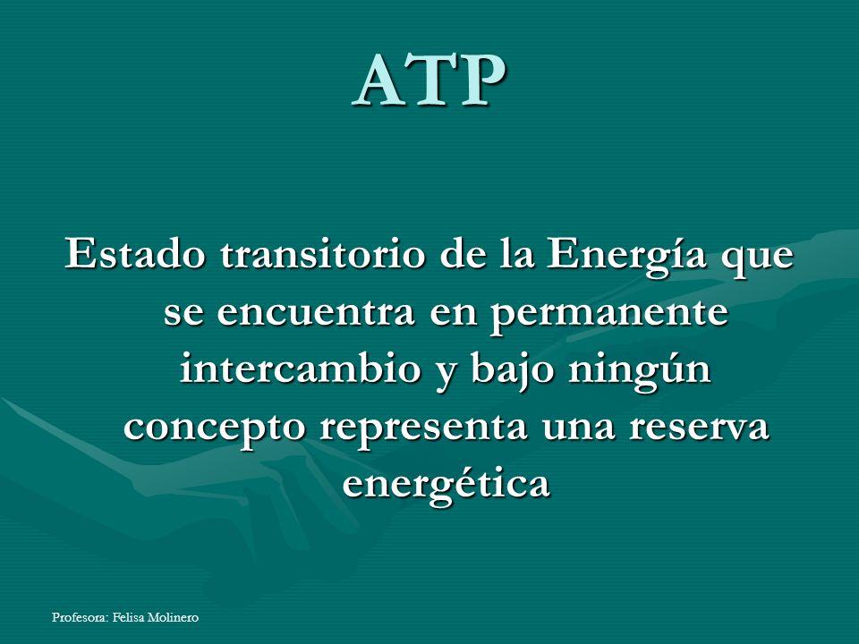 Profesora: Felisa Molinero ATP Estado transitorio de la Energía que se encuentra en permanente intercambio y bajo ningún concepto representa una reser
