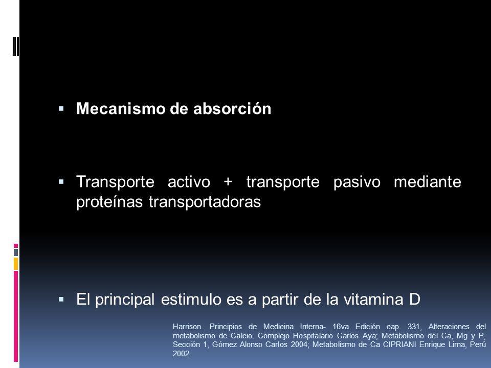Mecanismo de absorción Transporte activo + transporte pasivo mediante proteínas transportadoras El principal estimulo es a partir de la vitamina D Har