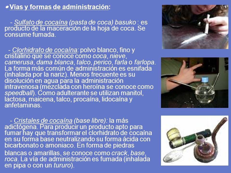 Vías y formas de administración: - Sulfato de cocaína (pasta de coca) basuko : es producto de la maceración de la hoja de coca. Se consume fumada. - C