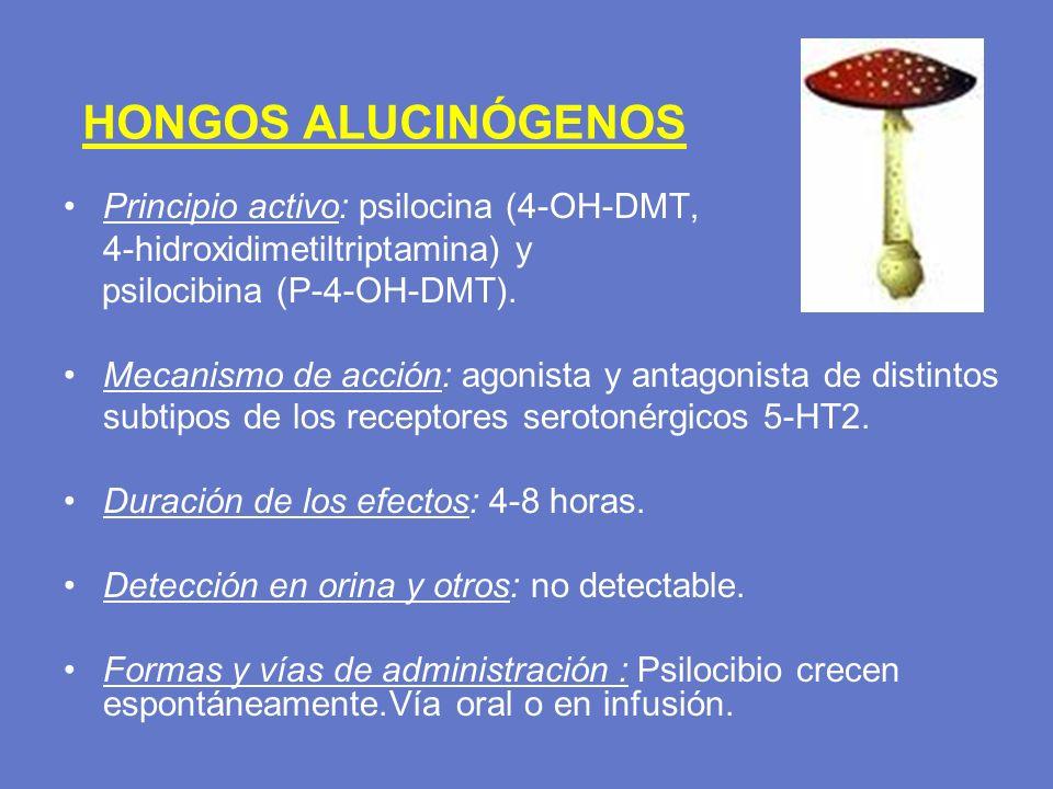 HONGOS ALUCINÓGENOS Principio activo: psilocina (4-OH-DMT, 4-hidroxidimetiltriptamina) y psilocibina (P-4-OH-DMT). Mecanismo de acción: agonista y ant