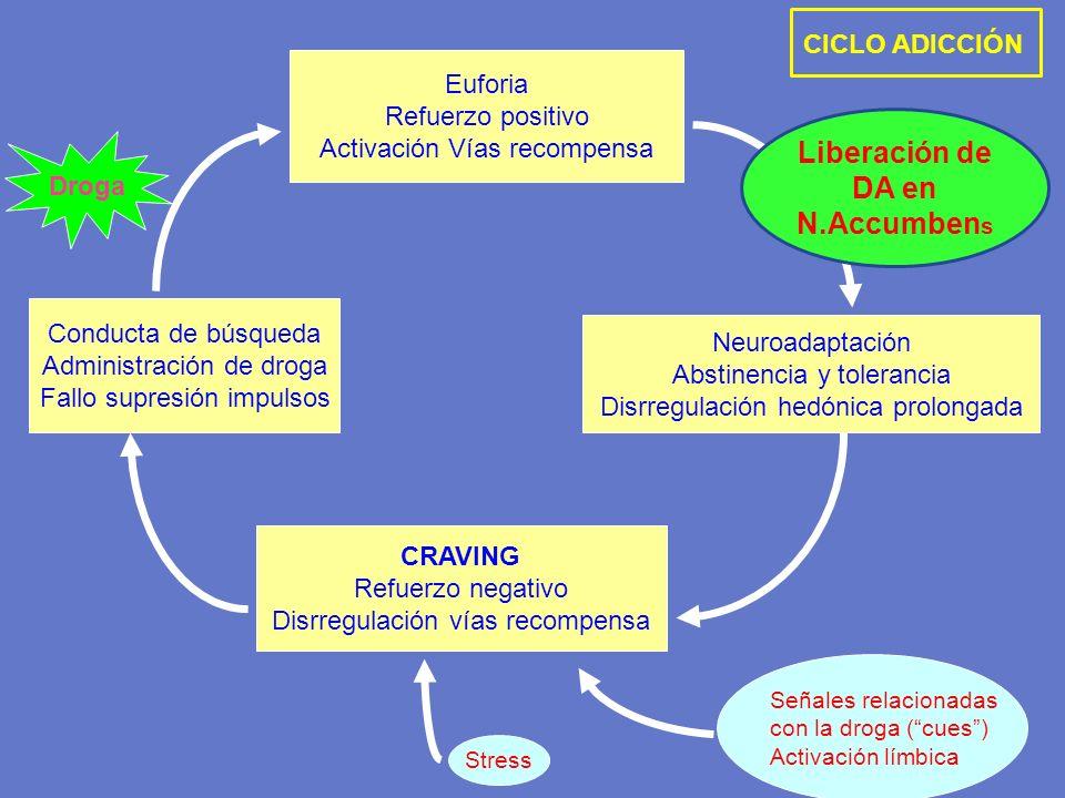 Euforia Refuerzo positivo Activación Vías recompensa Neuroadaptación Abstinencia y tolerancia Disrregulación hedónica prolongada CRAVING Refuerzo nega