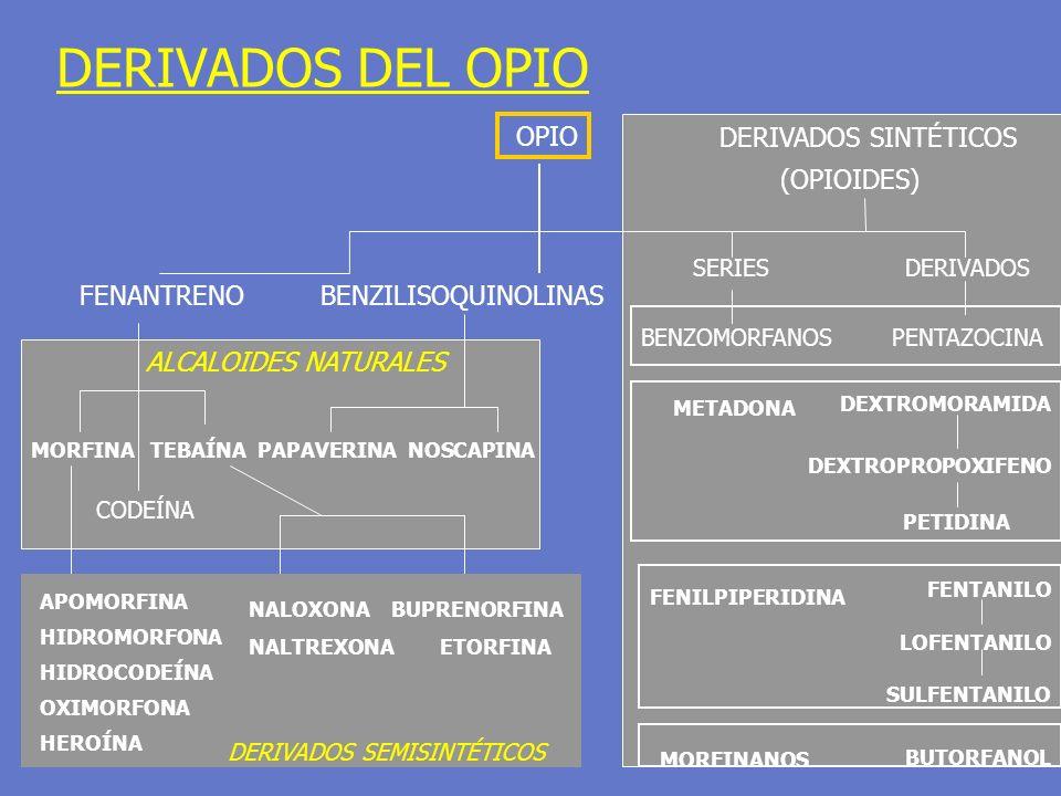 DERIVADOS DEL OPIO OPIO FENANTRENOBENZILISOQUINOLINAS ALCALOIDES NATURALES MORFINA TEBAÍNA PAPAVERINA NOSCAPINA APOMORFINA HIDROMORFONA HIDROCODEÍNA O