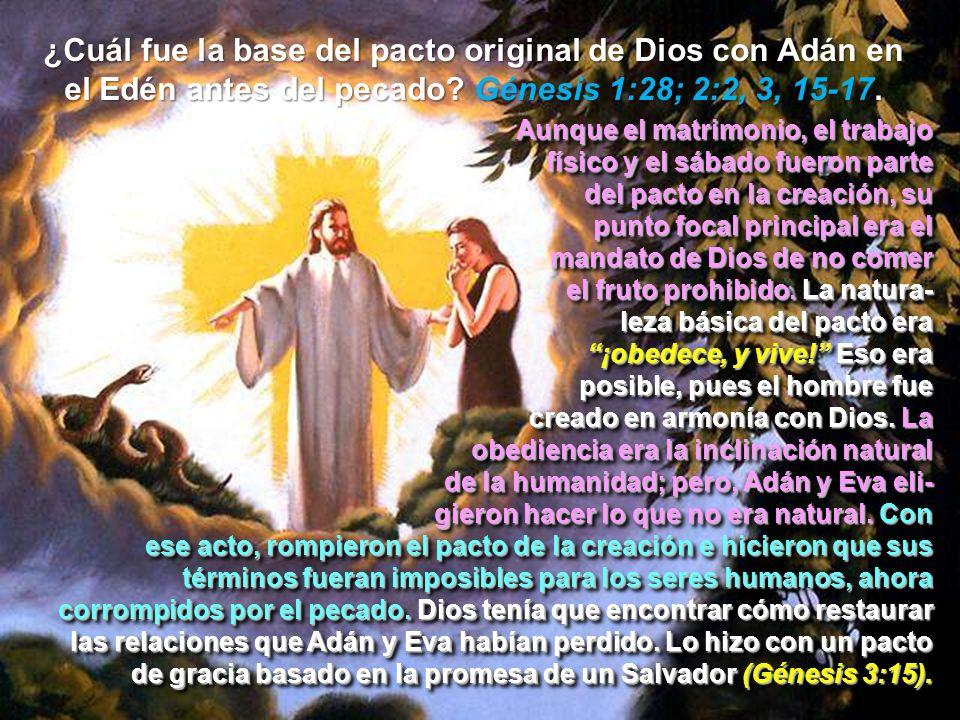 ¿Cuál fue la base del pacto original de Dios con Adán en el Edén antes del pecado? Génesis 1:28; 2:2, 3, 15-17. Aunque el matrimonio, el trabajo físic