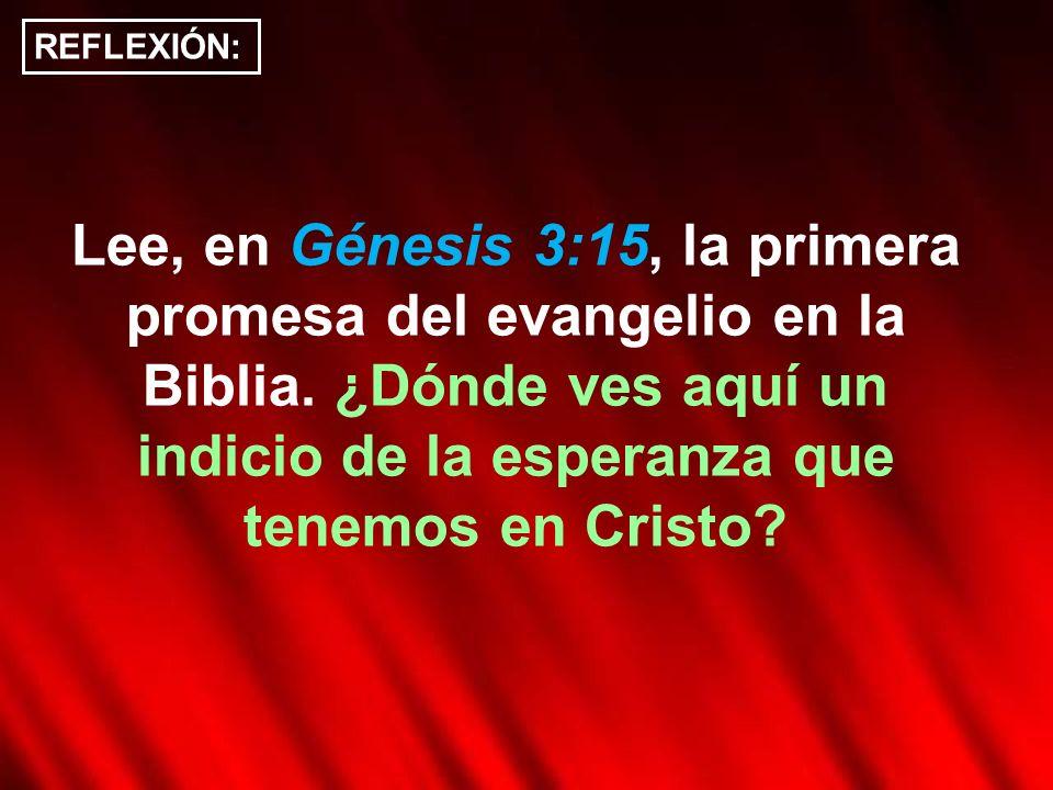 Lee, en Génesis 3:15, la primera promesa del evangelio en la Biblia. ¿Dónde ves aquí un indicio de la esperanza que tenemos en Cristo? REFLEXIÓN: