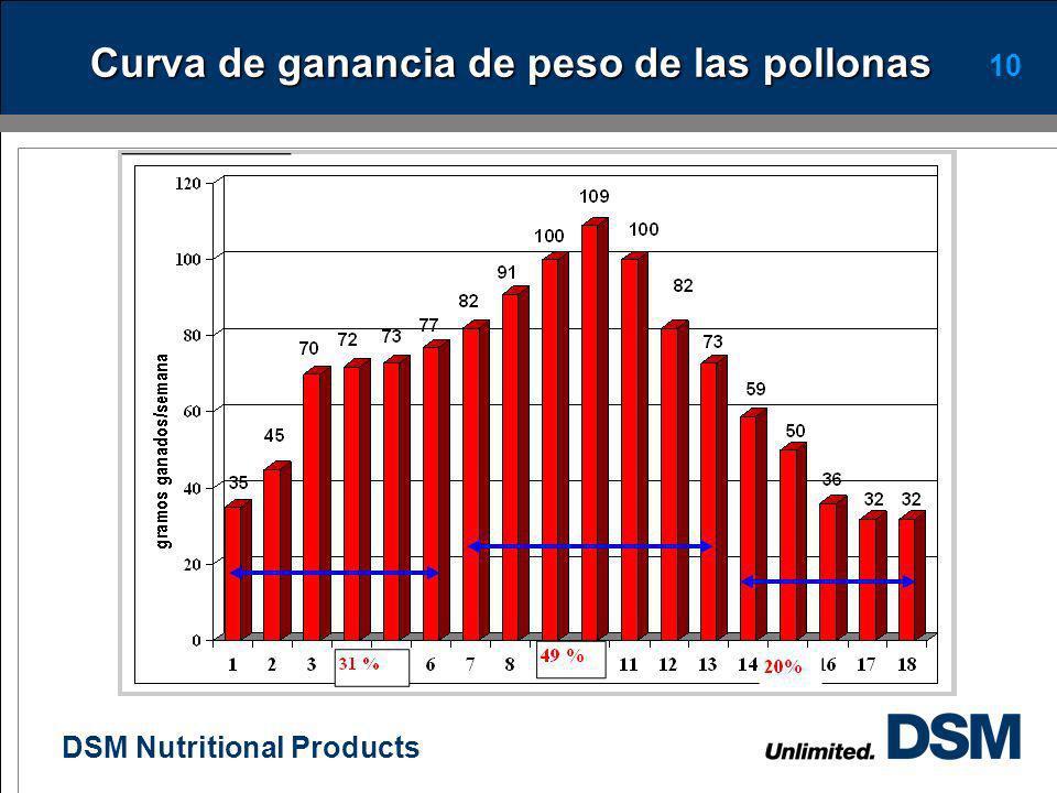 DSM Nutritional Products 9 Consideraciones durante la crianza Un buen lote inicia con la buena calidad de la pollita al día de edad. Cada lote debe se