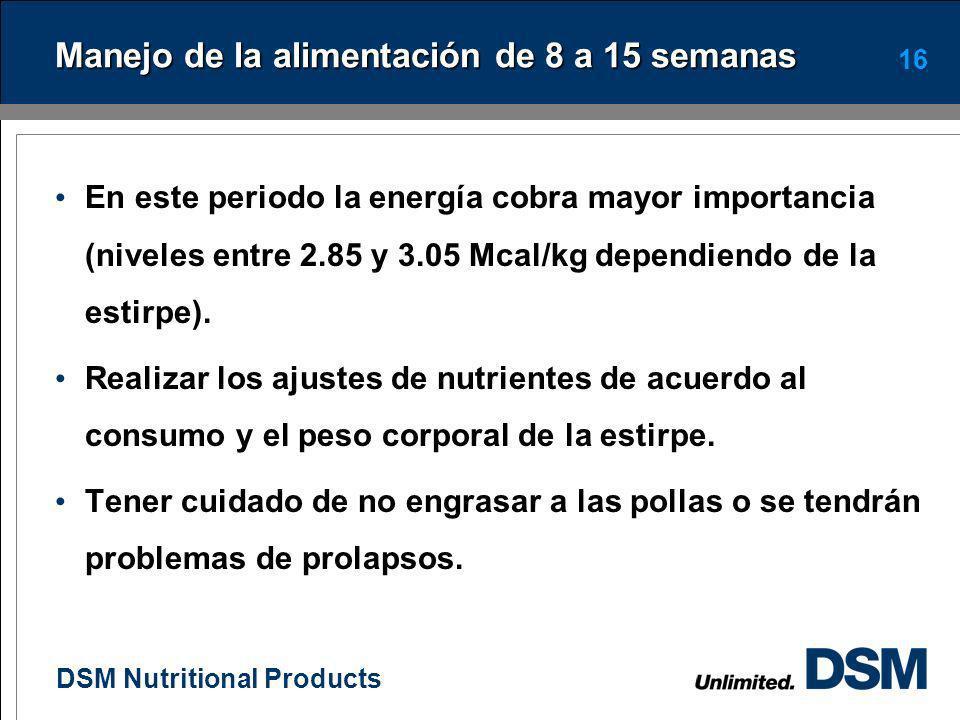 DSM Nutritional Products 15 Niveles de aminoácidos totales y proteína en iniciación de diferentes estirpes NutrimentoNRC 1994 Leeson 2000 HL W36 Bovan