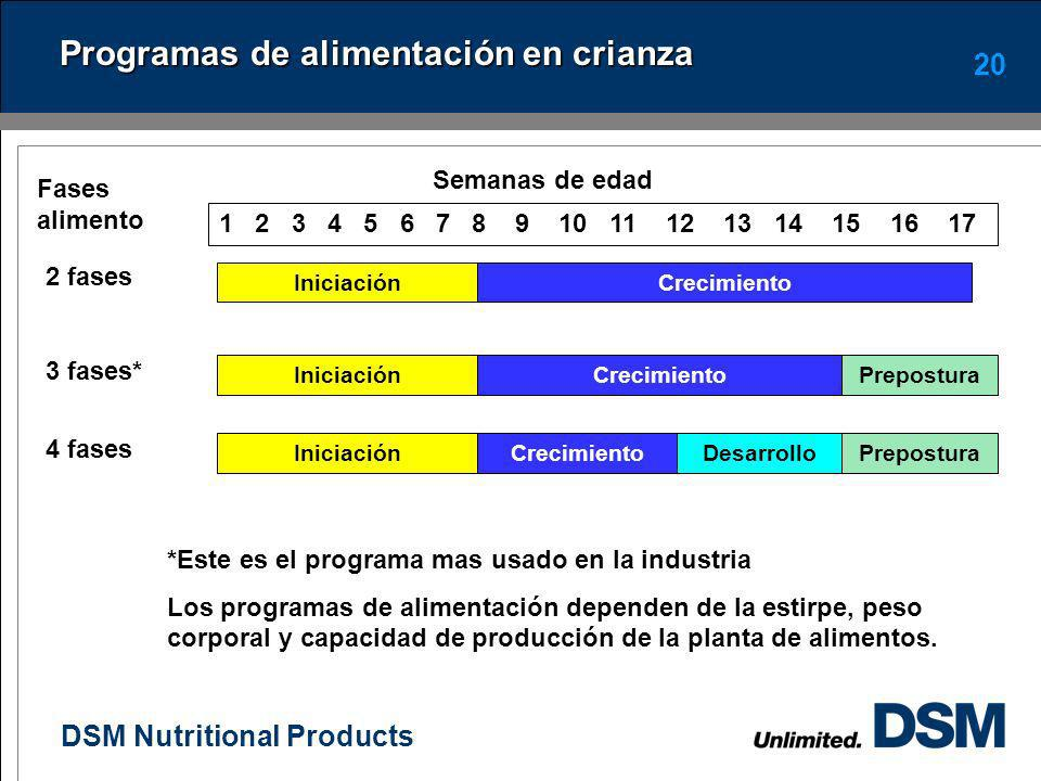 DSM Nutritional Products 19 Uso del alimento de prepostura Su objetivo es facilitar la transición en el metabolismo del calcio (Ca) antes de la madure