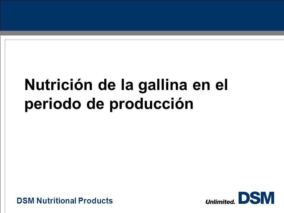 DSM Nutritional Products 21 1.Preiniciador: 1 día a 3 semanas. 2.Iniciador: 3 – 7 semanas (550 g). 3.Crecimiento: 8 – 12 semanas (1.000 g) 4.Desarroll