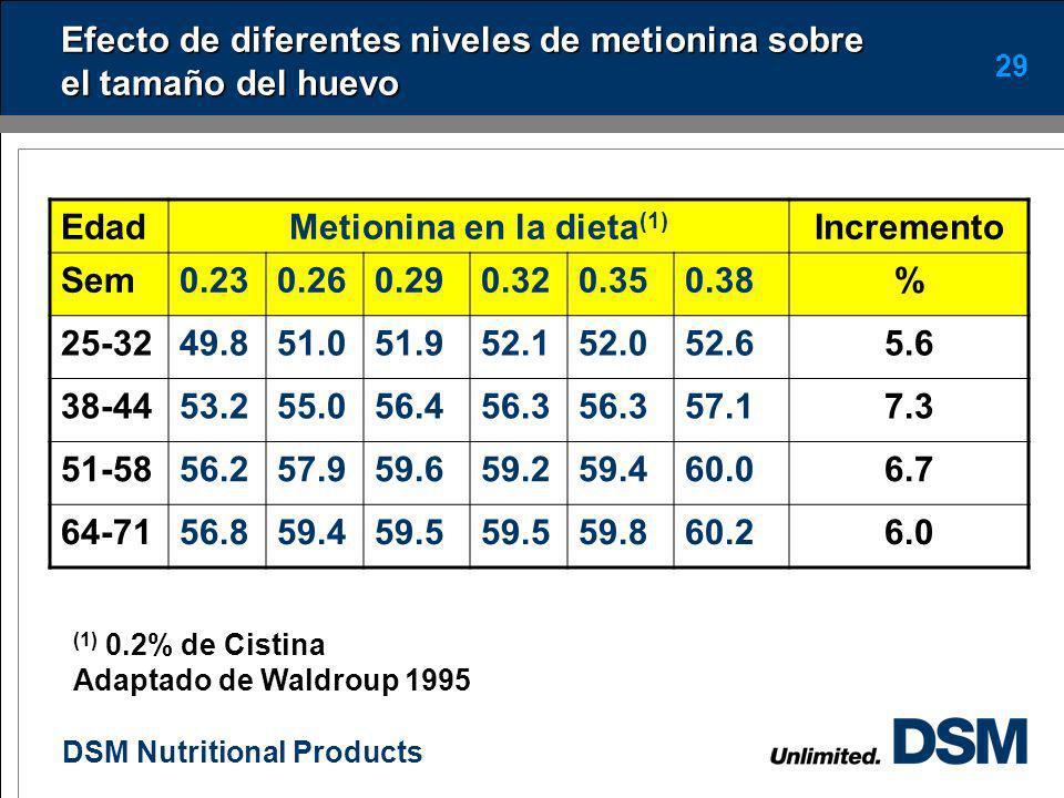 DSM Nutritional Products 28 Efecto del peso corporal sobre el tamaño del huevo Peso a las 18 semanas, g Peso de los 1ros huevos, g 110046.9a 120048.4b