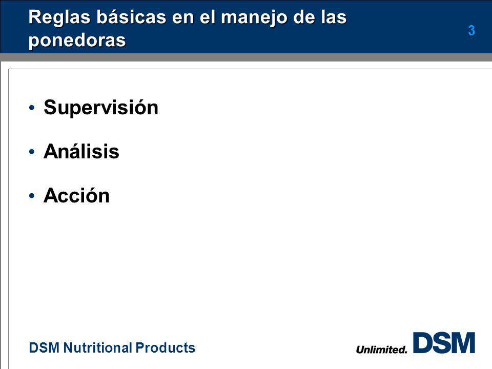 DSM Nutritional Products 2 Introducción
