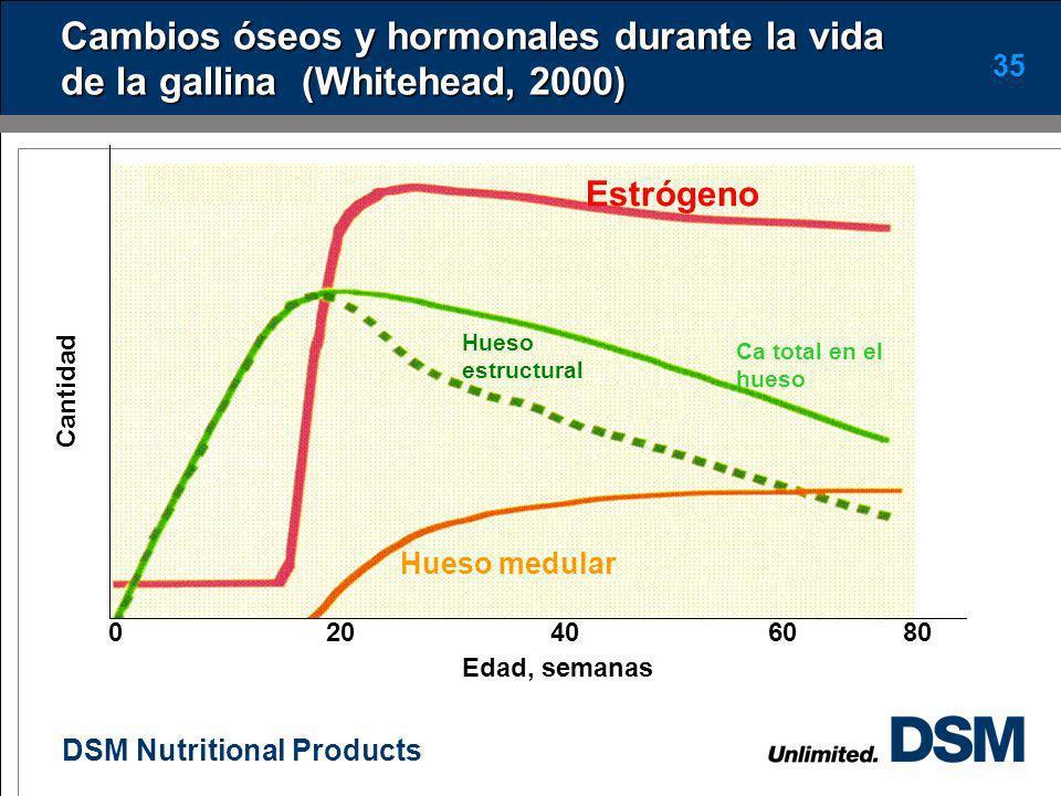 DSM Nutritional Products 34 Consumos de calcio y fósforo Se recomiendan consumos diarios de calcio entre 3.7 a 4.3g/ave/día Se sugiere que por lo meno