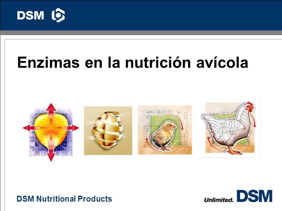 DSM Nutritional Products 45 Ventajas de formular a proteína ideal en ponedoras Menor contaminación al ambiente Mayor productividad durante el estrés c
