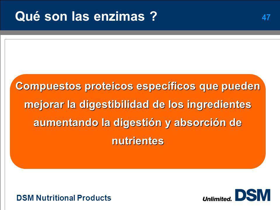DSM Nutritional Products 46 Enzimas en la nutrición avícola
