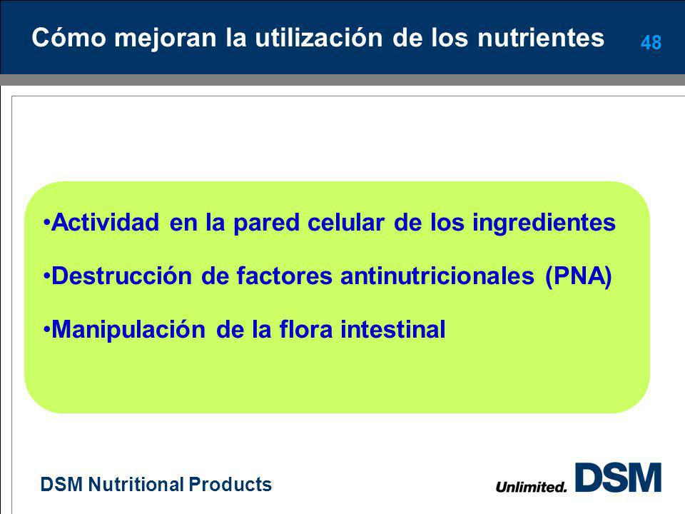DSM Nutritional Products 47 Qué son las enzimas ? Compuestos proteicos específicos que pueden mejorar la digestibilidad de los ingredientes aumentando